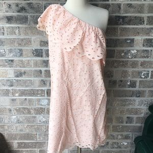 LOFT NWT One Shoulder Eyelet Pink Ruffle Dress